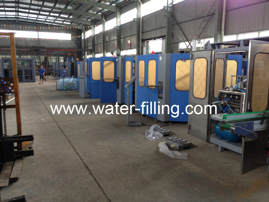 Automatic Blow Molding Manufacture workshop